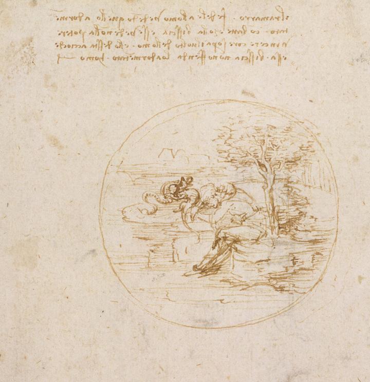 allegorylizard copy